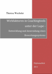 Wirkfaktoren in Coachingtools unter der Lupe