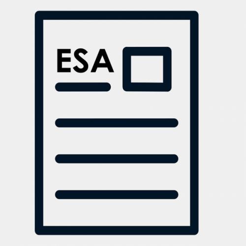 Fachwirt ESA BPR01 bis 07 Paket ILS SGD Lösungshilfe IHK