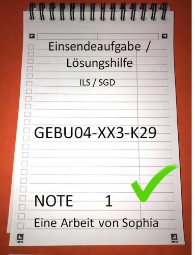 GEBU04-XX3-K29 // GEBU 04 // Note 1 // 100 Punkte