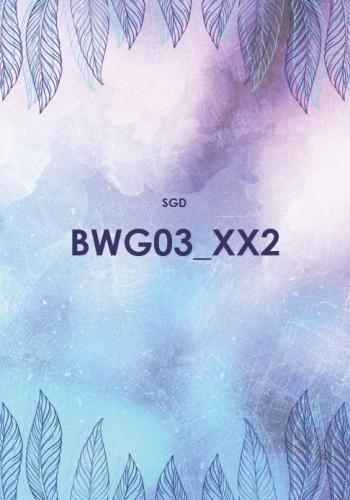 BWG03 Betriebswirtschaftliche Grundlagen (SGD/ILS)